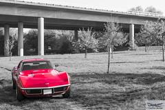 Corvette C3 Stingray Coupe (886719) (Thomas Becker) Tags: auto autumn © fall chevrolet car america vintage germany deutschland us big nikon automobile raw hessen stingray thomas united herbst voiture bil oldtimer block states gps nikkor fx 1972 corvette coupe f28 v8 coupé langen d800 c3 hesse becker historisch automobil 454 pkw 2470 uscar ls5 worldcars aviationphoto 454ci 151026 454cui