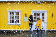 Iceland (Yann OG) Tags: color window rain yellow jaune iceland bokeh pluie contraste fjord fenêtre couleur goutte ísland raindrop islande icelandic vitre siglufjörður sigma30mm ciré islandais norðurland tröllaskagi fjallabyggð ciréjaune