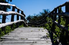 _IGP5846 (FrancescoDiBenedetto89) Tags: blue stella sea sky bw parco white black nature mare pentax natura monte cilento percorso zafferano montestella