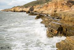 Tide pools (Raf Debruyne) Tags: california usa canon landscape eos 5d cabrillo mk3 mark3 24105mm 24105mmf4 canonef24105mmf4lusm canon24105mmf4 5dmkiii 5dmarkiii canoneos5dmk3 rafdebruyne debruynerafphotography debruyneraf canoneos5dmkill