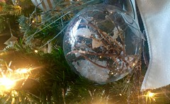 Caroling, Caroling, Caroling... (EDWW day_dae (esteemedhelga)) Tags: santa christmas xmas holiday snow stockings st bells festive reindeer snowflakes snowman globe poinsettia illuminations garland holly scrooge nicholas elf wreath evergreen ornaments angels tinsel icicle manger yule santaclaus mistletoe nutcracker cheer jolly christmastrees happyholidays bethlehem merrychristmas bauble rejoice goodwill partridge elves yuletide caroling holidayseason carolers seasongreetings merrifieldgardencenter edww christchild daydae esteemedhelga jesus hohoho gingerbread wrappingpaper giftgiving joyeuxnoel northpole holidaydecornativity sleighride artificialtree candycane feliznavidadfrostythesnowman kriskringle sleighbells stockingstuffer wisemen twelvedaysofchristmas winterwonderland