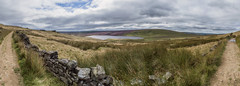 Upper Gorple Reservoir (liferichgrass) Tags: england panorama countryside unitedkingdom heather yorkshire hike reservoir grassland calluna widdop uppergorple