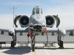 "A-10C 80-0189/FT 74th FS/23rd WING ""Flying-Tigers"" ACC/USAF. Kandahar Air Base, Afghanistan. March 2011. (Aircraft throughout the years) Tags: afghanistan acc ft usaf kandahar flyingtigers thunderboltii fairchildrepublic a10c 23wing 74fs"