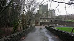 Tintern Abbey (Ken Meegan) Tags: ireland abbey tinternabbey cowexford saltmills