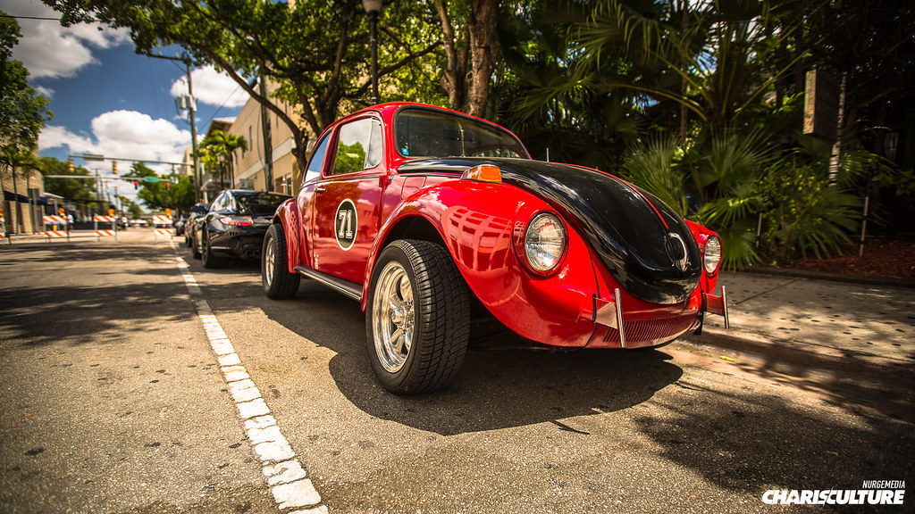 The World's Best Photos of beetle and miami - Flickr Hive Mind