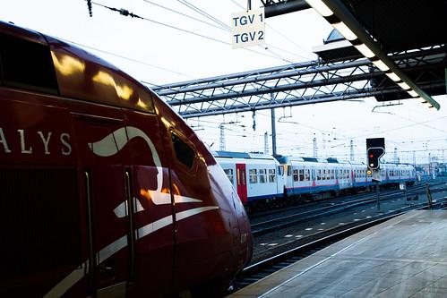 Belgique - Bruxelles - Gare du Midi (Vol 8) - A l'aube d'un départ