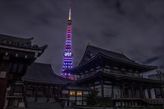 WFGT! (703) Tags: buddhism buddhisttemple da18135mm japan pentaxk5 theworldfederationofgreattowers tokyo tokyotower wfgt zojoji cityscape night nightscape nightscene nightview temple