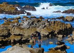 Tide Pool Explorers (Michael T. Morales) Tags: pacificgrove california tidepool starfish lowtide rockformation blue wave boys water