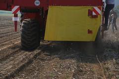 02-IMG_1865 (hemingwayfoto) Tags: ausstellung ernte erntemaschine europa kartoffel kartoffelroder messe reifen roden spur staub