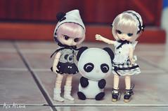 Feliz dia das crianças! (Açu Aizawa) Tags: littledal littlebyul humptydumpty sanrio mymelody baby panda obitsu11 outfit handmade felt mascot