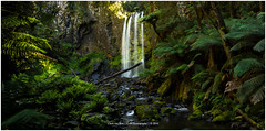 Hopetoun Falls, Australia (CvK Photography) Tags: australia autumn canon color cvk fall greatoceanroad greatotwaynp holiday landscape nationalpark nature outdoor victoria waterfall falls