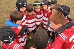 DSCF7294 (Minirugby AS Rugby Milano) Tags: 31102016 u7 cusago