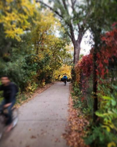 Photo - Samuel Forsyth- Boulder Creek Path