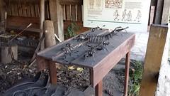 Steel creepy crawlies (roger_forster) Tags: steel creepy crawlies millipede jellyfish spider blacksmith forge art maryarden wilmcote stratforduponavon blacksmithing