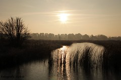 Earnewâld (dirk..) Tags: earnewâld fryslân op zijn mooist friesland its best von seiner besten seite på sit bedste frylsân the netherlands holland photography dirk © fryslan