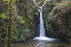chorro (missemeyas) Tags: cascada otoo bosque puentes musgo nikon d3200 asturias agua humedad setas colores