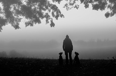 Mysteriousness (Dan-Schneider) Tags: blackandwhite bw streetphotography schwarzweiss silhouette dog fog mood light olympus omdem10 monochrome human moment