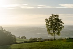 (lyli12) Tags: aveyron paysage landscape brume arbre campagne midipyrénées occitanie green automne matin france nikon d7000 nature