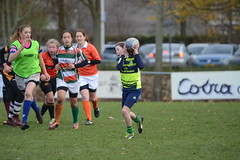 DSC_8901 (mbreevoort) Tags: rfchaarlem rugby rcthedukes brcbreda dioklrc thepickwickplayersdrc hookers goudarfc