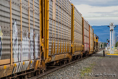 UP 7442 | GE AC45CCTE | UP La Grande Subdivision (M.J. Scanlon) Tags: rail railroad railway train track engine locomotive union pacific la grande oregon transportation power horsepower yellow inter modal auto scanlon canon 7d outdoors