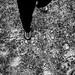 El cielo a mis pies
