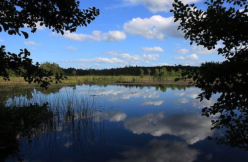 Maglabykärr, Söderåsen, Sweden