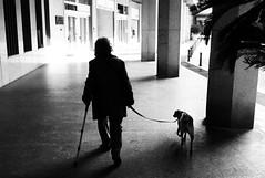 man and dog (gorbot.) Tags: blackandwhite italy monochrome rangefinder genova mmount leicam8 silverefex voigtlander28mmultronf19