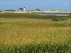 (mahler9) Tags: lighthouse grass provincetown capecod flag september marsh weathervane sanddune wetland jaym 2015 hatchesharbor mahler9