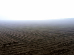 Foggy morning, At Northern Japan (Zunten) Tags: summer brown white field japan fog hokkaido farm hill soil   gr  biei ricoh      darkbrown hokkaid     kamikawadistrict