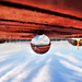 Bertelli_Marzia_Terra rossa