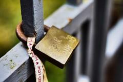 Lock (a1jamesw69) Tags: love eh nikon gate lock derbyshire valentine engraving ribbon padlock englishheritage suttonscarsdale