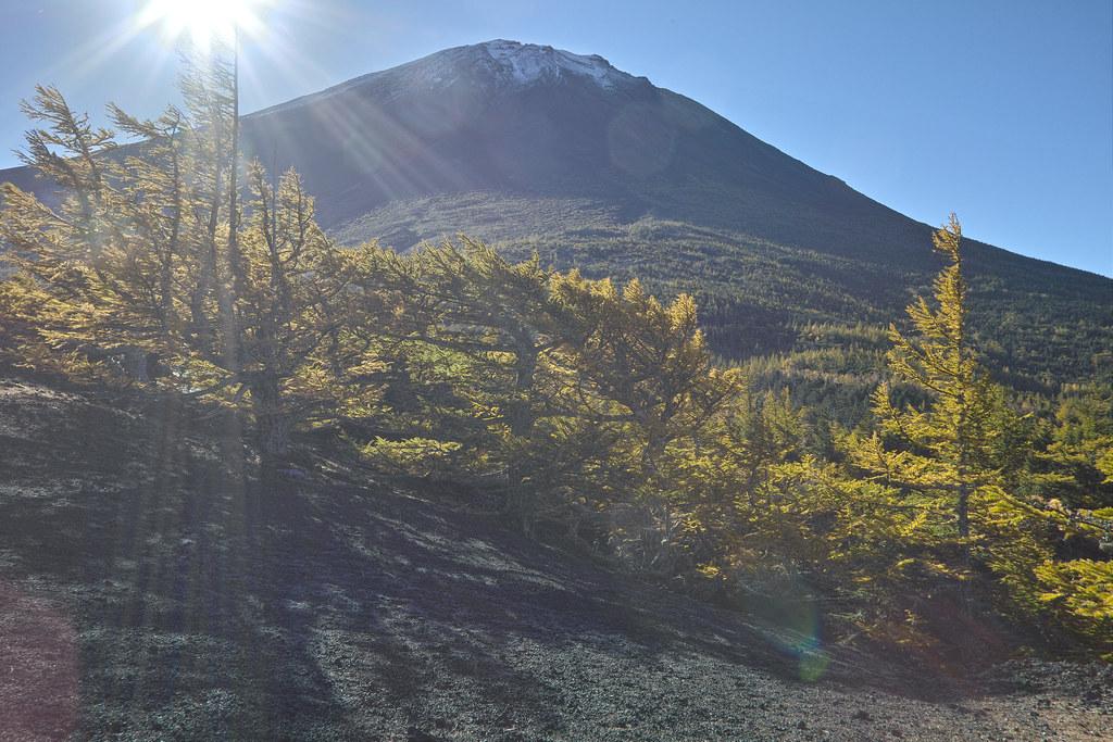Nice Morning in Mt. Fuji