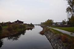 Autumn (Maria Eklind) Tags: city sky mist reflection nature water fog se europe autum sweden outdoor urbannature sverige malm hst dimma ribersborg skneln