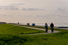 _DSC0197 (durr-architect) Tags: lake water dike almere oostvaardersplassen oostvaardersdijk