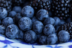Blue-on-Blue 3 (flygrl67) Tags: blue white black stone fruit dark season ceramic photography stand berry photographer berries blackberry purple farm michelle deep bowl fresh blueberry late farms local organic centralcoast slo slocounty turkish arroyogrande pesticidefree rutiz californiacentralcoastphotographer torresgrant