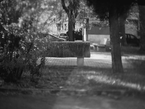 dreamy bench