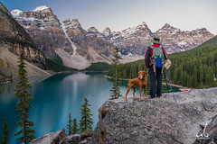 The Photographer and his Dog (anoopbrar) Tags: trees sunset portrait panorama dog lake canada mountains reflection water sunrise landscape photography turquoise scenic surreal alberta valley banff colourful peaks moraine banffnationalpark morainelake valleyofthetenpeaks tenpeaks anoopbrar