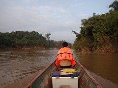 Laos Fieldwork
