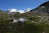 Alpes valaisannes (Iris_14) Tags: gornergrat valais monterosa lyskamm glacier rotenboden zermatt alpen swissalps riffelsee riffelhorn reflet nature switzerland suisse schweiz