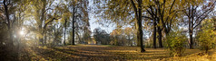 Herbst (diwan) Tags: germany deutschland sachsenanhalt saxonyanhalt magdeburg city stadt place rotehorn morgens inthemorning light park sonne sun herbst autumn laub outdoor farben colors lightroom hdr highdynamicrange threesingleshots google nikcollection plugins viveza2 roundabout panoramix panorama stitch ptgui fotogruppe fotogruppemagdeburg canoneos650d canon eos 2015 geotagged geo:lon=11648804 geo:lat=52116804