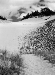 Dunescape (pabs35) Tags: warrendunesstatepark warrendunes sanddune dunescape sand film believeinfilm blackandwhite bw michigan ilford fp4 fp4plus ilfordfp4plus 120 mediumformat mamiya m645 1000s mamiyam6451000s redfilter