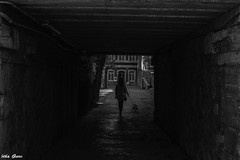 La chica del pasadizo (Jotha Garcia) Tags: blackwhite calle street perro dog mujer woman tunel tunnel pasadizo passageway jothagarcia nikond3200 otoo autumn 2016 october chica girl mascota pet monochrome monocromo lightsshadows lucesysombras alhamadearagon aragn espaa spain octubre