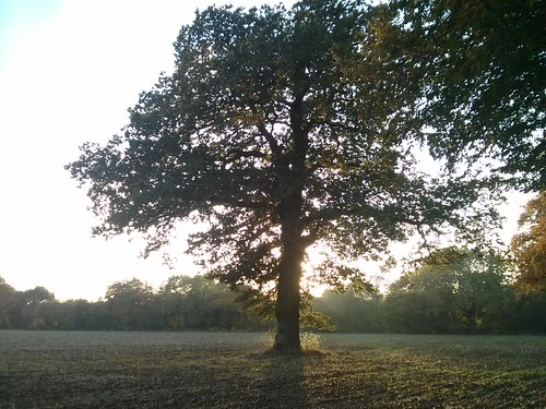 Samhain sundown
