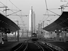 BB 1144 241 (boti_marton) Tags: bb 1144 sgp porszv class1144 train locomotive transport publictransport travel blackwhite bw trainstation praterstern wien vienna bcs austria ausztria sterreich europa panasonic dmc lz20 lumix