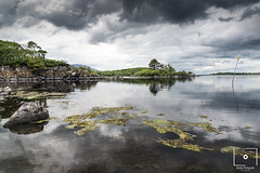 Louch Conn, Pontoon (BuckleyPhotographer) Tags: landscape water algae mood moody clouds cloudscape reflection trees nikon nikond750 depth lighting exposure background wallpaper