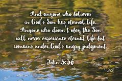 John 3:36 (dianabog ) Tags: bible scripture theword