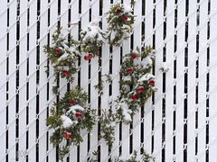 festive fence (marianna_a.) Tags: holidays festive christmas white plastic fence green cedar bough branch red berries hff mariannaarmata