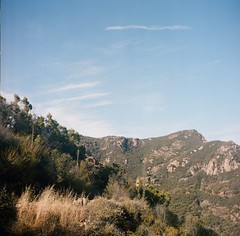 Where are we going (Laura-Lynn Petrick) Tags: series mediumformat lauralynnpetrickmediumformat lauralynnpetrickmediumformatcalifornia lauralynnpetrickmountainsofsantamonica wherearewe californiasantamonica malibucalifornia calabases californiahighway mulhollanddrive lauralynnpetrickmulhollanddrivela mikeykampmann lauralynnpetrickmikeykampmann hiking hikingcaliforniahiking california