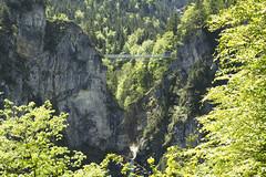 _MG_4592 (Jimbo pht) Tags: canon 7d eos dslr jbasl germany alemania deutschland bayern neuschwanstein schloss castle castillo fussen fssen jimbophoto