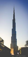 Burj Kahlifa (Charles Griggs) Tags: burj khalifa dubai uae travel world evening city